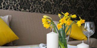 Rośliny na ścianie - zdrowy i piękny dom